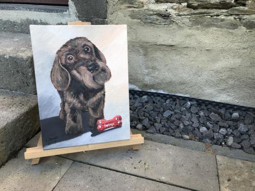 Auftragsarbeit Tierportrait 40x30cm